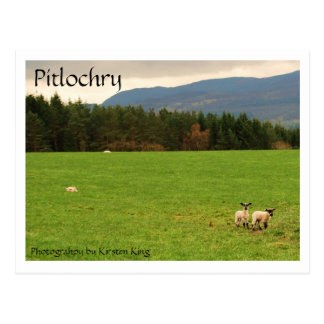 DSC_0522, Pitlochry, Photograhpy by Kirsten King Postcard