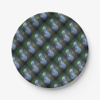 DSC_0688 (2).JPGby Jane Howarth Paper Plate