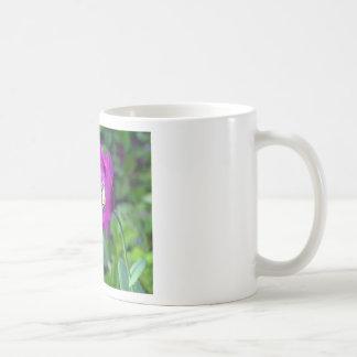 DSC_0695.00 COFFEE MUG