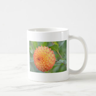 DSC_0698.0 COFFEE MUG