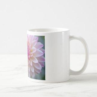 DSC_1206000 COFFEE MUG
