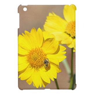 DSC_1493.000 iPad MINI COVER