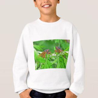 DSC_3480ps.jpg Sweatshirt