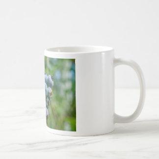 DSC_4190 COFFEE MUG