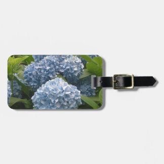 DSCF0253.JPG LUGGAGE TAG