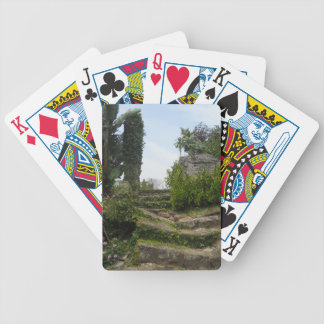DSCN0007.JPG BICYCLE PLAYING CARDS