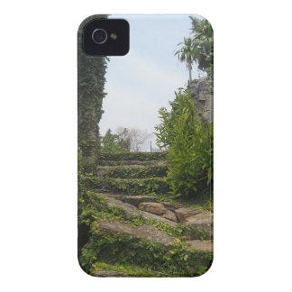 DSCN0007.JPG iPhone 4 COVER