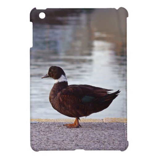 Duck background cover for the iPad mini