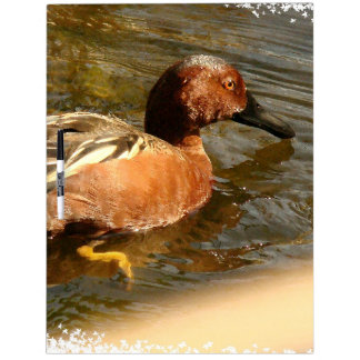 Duck Birds Animals Wildlife Photography Dry Erase Boards