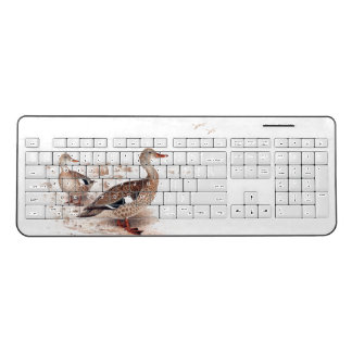 Duck Birds Wildlife Animals Pond Lake Keyboard
