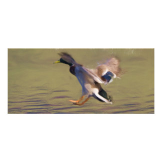 Duck BookMark Rack Card