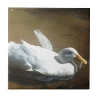 Duck Ceramic Tile