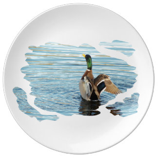 Duck - duck - Photography Jean Louis Glineur Plate