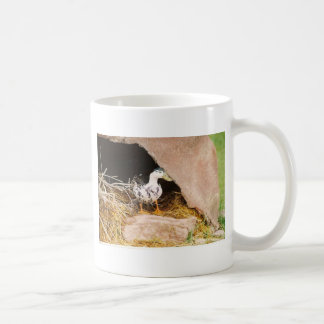 Duck Guarding Cave Classic White Coffee Mug