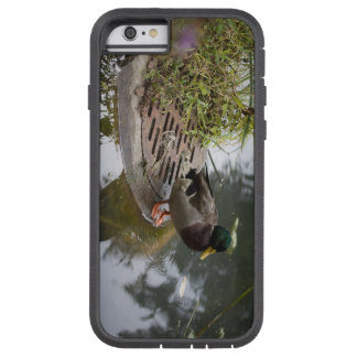 Duck in a Pond Tough Xtreme iPhone 6 Case