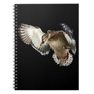 Duck in Flight Notebooks