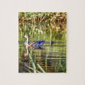 DUCK IN WATER AUSTRALIA ART EFFECTS JIGSAW PUZZLE
