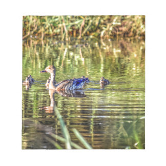 DUCK IN WATER AUSTRALIA ART EFFECTS NOTEPAD