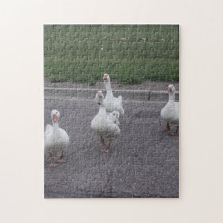 Duck Jigsaw Puzzle No. 2
