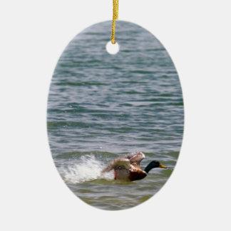 Duck Landing in Water Ceramic Ornament