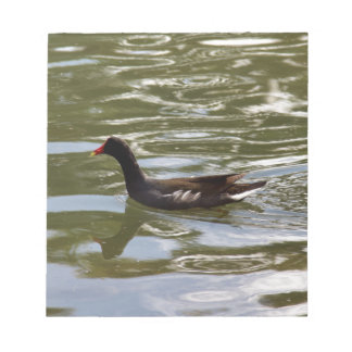 Duck Notepad