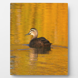 Duck on a golden pond plaque