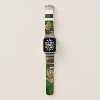 Duck on Dock Apple Watch Band