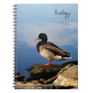 Duck on Rocks Spiral Notebook