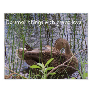 Duck Preening in the Reeds Poster