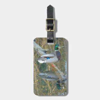 Duck Reflected Luggage Tag