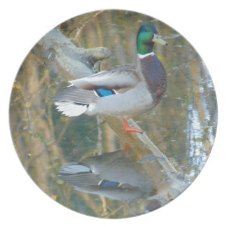 Duck Reflected Plate