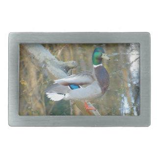 Duck Reflected Rectangular Belt Buckle
