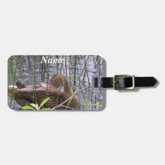 Duck swimming on a pond luggage tag