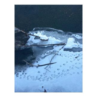 Duck Tracks In the Snow Letterhead