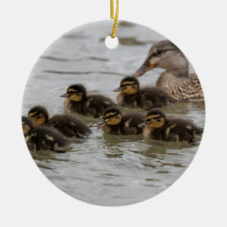 duck with her ducklings at lake round ceramic ornament