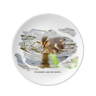 DUCKLING DUCK CHICKENS - photo Jean Louis Glineur Porcelain Plates