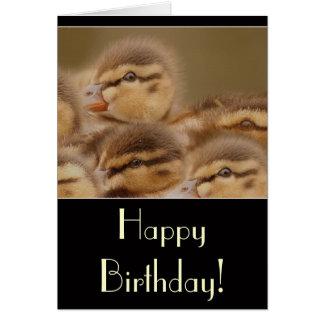 Ducklings Birthday Card