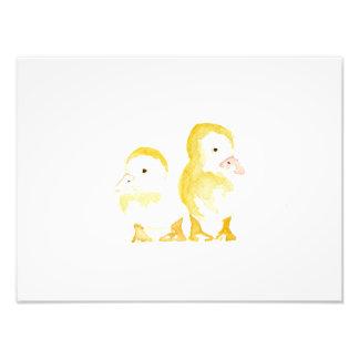Ducklings Watercolour Photo Print