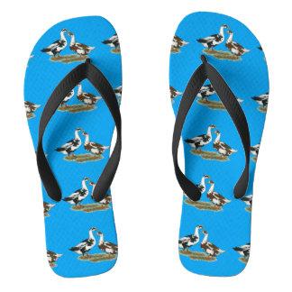 Ducks Ancona Pair Flip Flops