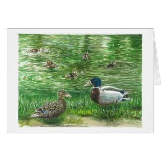 Ducks at Glendoveer pond Card