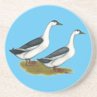 Ducks:  Blue Magpies Coaster