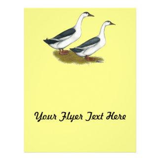 Ducks:  Blue Magpies Flyer