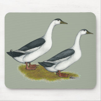 Ducks:  Blue Magpies Mouse Pad