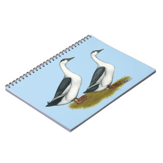 Ducks:  Blue Magpies Notebooks
