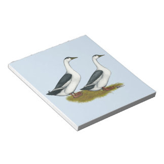 Ducks:  Blue Magpies Notepad
