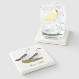 Ducks:  Blue Magpies Stone Coaster