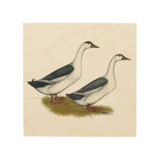 Ducks:  Blue Magpies Wood Wall Decor