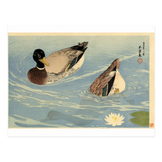 Ducks by Goyo Hashiguchi Postcard