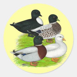 Ducks:  Call Quartet Round Sticker