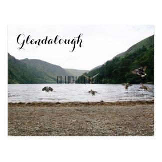 Ducks Fly Together in Glendalough Postcard